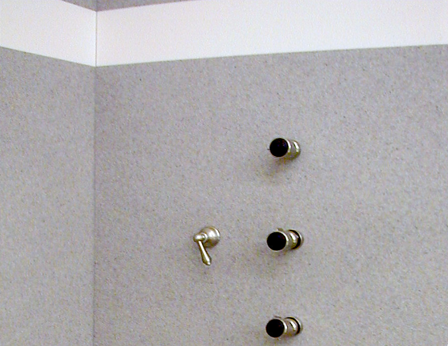 Matte Finish Shower